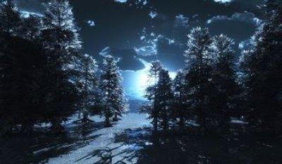 Зимний вечер тих и светел...