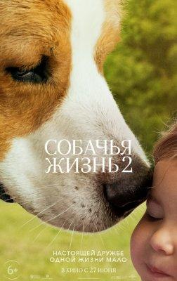Собачья жизнь 2. Мини-рецензия